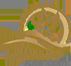 Tshebedisano